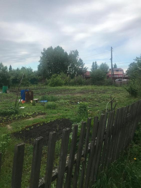 Омская область, Омск, СНТ Зеленый берег, 160 4
